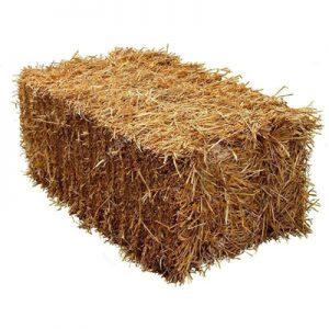 Сено в тюках цена – купить сено в тюках оптом